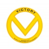 300-10000-80-victory-support-our-troops-1
