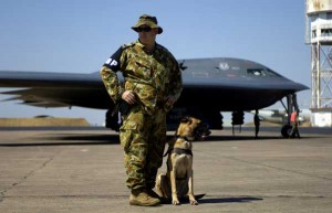 K9 and us military soldier