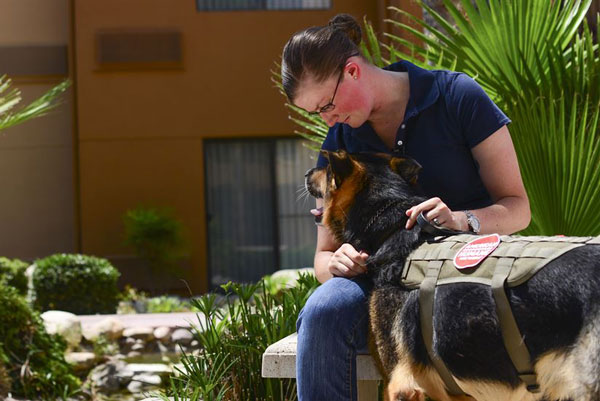 Adoption Reunites Airman With Military Working Dog